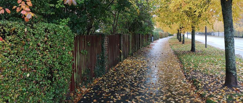 Sverige regn